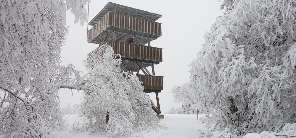 Erbeskopf im Winter
